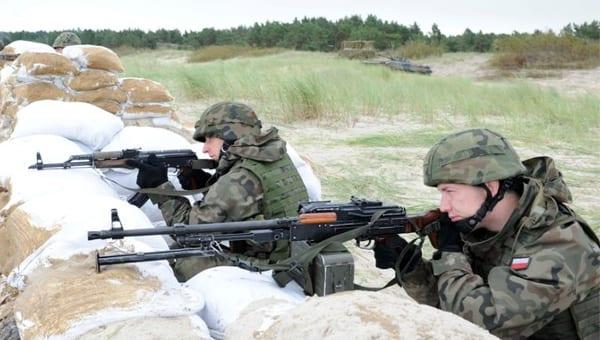 Szwedzka armia kupi polskie karabinki?