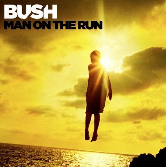Bush Man On The Run album cover small