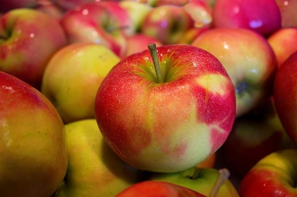 Polskie jabłka będą reklamowane w Egipcie i Algierii