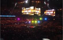 Lima zwolniony z UFC