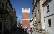 Grób wojownika sprzed 1000 lat odkryty w Sandomierzu