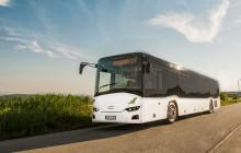 Wielki sukces Solarisa! 300 autobusów dla Włoch