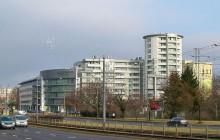 Asseco Poland planuje dywidendę w wysokości ćwierć miliarda złotych