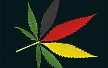 Niemieckie ministerstwo zdrowia planuje legalizację medycznej marihuany