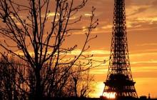 Paryż: Atak koktajlem Mołotowa! Zatrzymano sprawcę