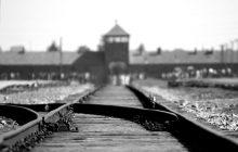 BBC w dzień wyzwolenia Auschwitz: Niemcy były okupowane przez nazistów