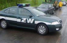 Trzej oficerowie wojska skatowali patrol policji
