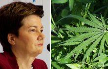 Wielka plantacja marihuany na działce męża Hanny Gronkiewicz-Waltz