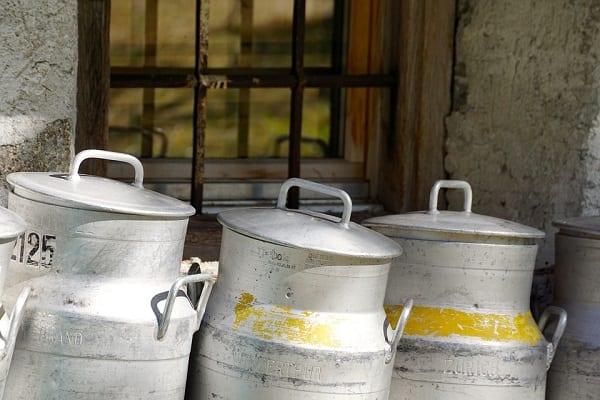 Przemysł mleczarski stawia na innowacje. Branża coraz bardziej skupia się na naturalności produktów