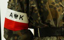 Pracownicy IPN odnaleźli na Litwie szczątki żołnierzy Armii Krajowej