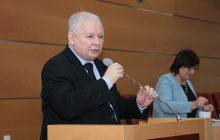 Kaczyński o wycince drzew: