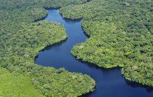 Amazonia ukształtowana przez ludy prekolumbijskie? Nowe badania zaskakują!