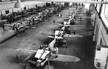Niesamowite znalezisko 14-latka. Samolot z czasów II wojny światowej i szczątki pilota