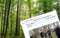 Radny PO wyciął swoje drzewa, a potem protestował przeciw Lex Szyszko [FOTO]