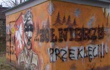 Kolejny mural poświęcony Żołnierzom Wyklętym zdewastowany [WIDEO]