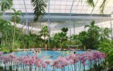 Rusza budowa największego parku wodnego w Polsce! [WIDEO]