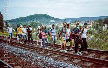 Szokujące słowa na temat rozdziału uchodźców. To samo zdjęcie w wielu paszportach, błędny wiek i odsyłanie do Europy niezweryfikowanych! [WIDEO]