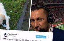 Tomasz Hajto pokazał duży dystans do siebie. Opublikował zdjęcie swojego nowego psa i zdradził, jak będzie się nazywał.