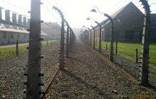 Oburzające słowa niemieckiego publicysty po przemówieniu Beaty Szydło w Auschwitz. Twierdzi, że polska premier chciała zrzucić na Niemców całą winę za Holokaust!