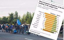 Obywatele tych państw najgorzej oceniają politykę UE ws. uchodźców. Nowe badanie Pew Research Center