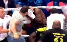 Kibice wbiegli na ring i pobili nowego mistrza. Niecodzienna sytuacja na gali [WIDEO]