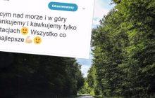 Internauci szydzą z posła PiS. Polityk wystosował apel do Polaków jadących na wakacje
