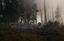 NATO publikuje spot o Żołnierzach Wyklętych, ale... nie z Polski.