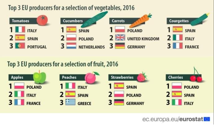 warzywa-owoce