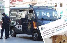 Zdjęcia kotów sposobem Internautów na terrorystów? Zaskakująca moda po atakach w Barcelonie ma... utrudnić zamachowcom dostęp do informacji!