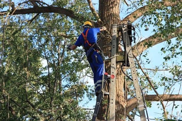 Enea Operator przywróciła napięcie w Rytlu. W Wielkopolsce prawie wszyscy Klienci Enei mają już prąd