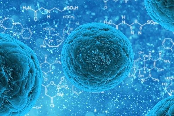 Badania, które prowadzi Polka mogą niebawem doprowadzić do przełomu w walce z rakiem. Wszystko dzięki nietypowej metodzie