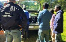 Polska Straż Graniczna zatrzymała grupę nielegalnych imigrantów. To była zorganizowana akcja [FOTO]