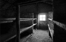 Ofiara eksperymentów w Auschwitz opowiedziała o tym, co przeżyła w obozie. Jej relację obejrzało już ponad 110 mln osób [WIDEO]