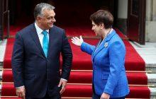 Victor Orban po spotkaniu z Beatą Szydło: zapewnił o wsparciu polskiego rządu i przedstawił jednoznaczną deklarację ws. uchodźców [WIDEO]