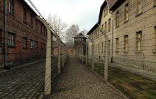 Niepokojące badanie wśród niemieckich uczniów. Prawie połowa nie wie, czym było Auschwitz!