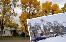 Wielkie śnieżyce w USA: takiej zimy nie widziano od 103 lat! Internauta pokazał jak w ciągu 24 godzin zmieniła się jego okolica [FOTO]