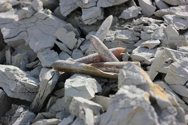 Ślady po krwawym najeździe i ludzkie szczątki. Nowe odkrycie polskich archeologów na terenie starożytnego miasta