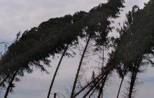 Uwaga! Do Polski znowu zbliża się silny wiatr. Mieszkańcy tych regionów powinni zachować szczególną ostrożność