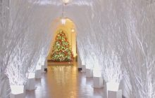 Biały Dom jak z bajki. Pierwsza Dama zaprezentowała dekoracje świąteczne! [WIDEO]