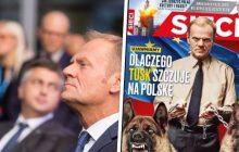 Donald Tusk zakpił z tygodnika