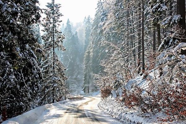 Takiej pogody w grudniu nie było od lat? Szykuje się prawdziwy ewenement!