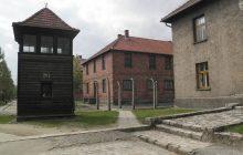 Skandaliczne zachowanie brytyjskich turystów podczas wizyty w Auschwitz. Ich zdjęcia oburzyły rodziny ofiar holokaustu