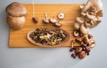 Technologia Blulog wspiera produkcję grzybów egzotycznych w Europie