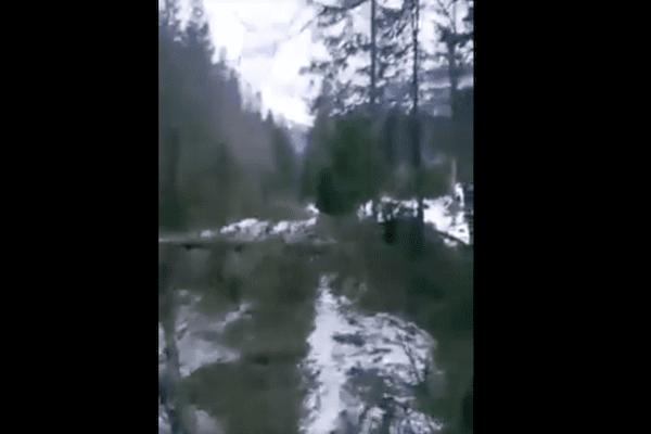 Tragiczny widok po silnym wietrze w Tatrach. Tak wygląda droga do Morskiego Oka! [WIDEO]