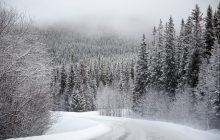 Czekają nas kolejne ciepłe święta? Ekspert: jeśli ta tendencja się utrzyma, śnieg będzie w Polsce zjawiskiem coraz rzadszym
