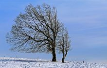 Po wichurach nadal 1,5 tysiąca osób bez prądu. Jaka pogoda na Boże Narodzenie? Wiadomo, kiedy powróci zima!