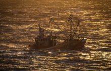 Do wybrzeży Japonii przybiła łódź widmo. Na pokładzie ciała ludzi. Wiadomo, skąd przypłynęła