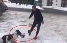 Internuaci krytykują Tuska za opublikowane w sieci nagranie. Twierdzą, że... nie ma szacunku do swojego psa. Chodzi o ten moment [WIDEO]