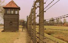 Spór na linii Polska - Izrael. Premier Morawiecki po raz kolejny zabiera głos