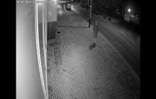 Rzeszów: Nowy trop ws. zaginionej kobiety. Policja dotarła do nagrań z monitoringu
